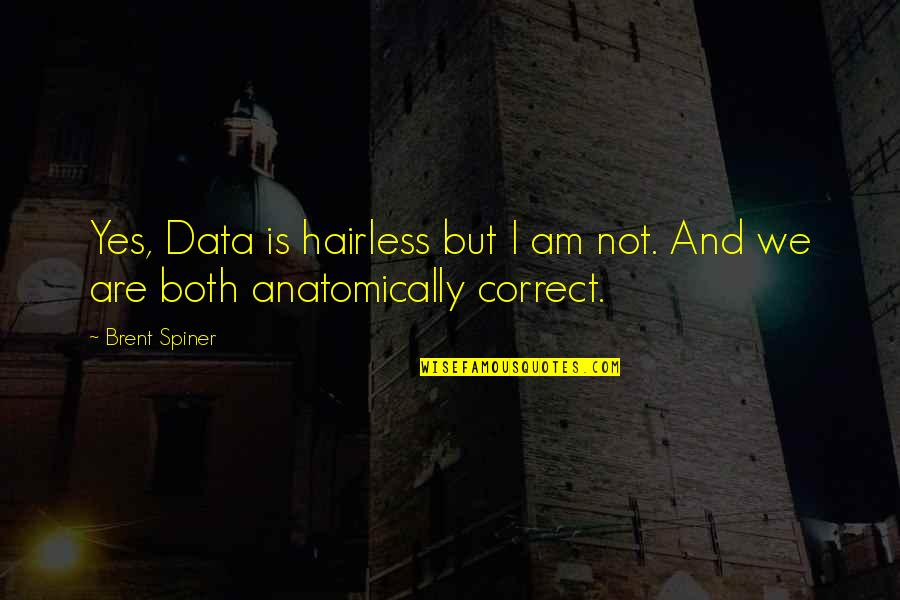 Hairless Quotes By Brent Spiner: Yes, Data is hairless but I am not.