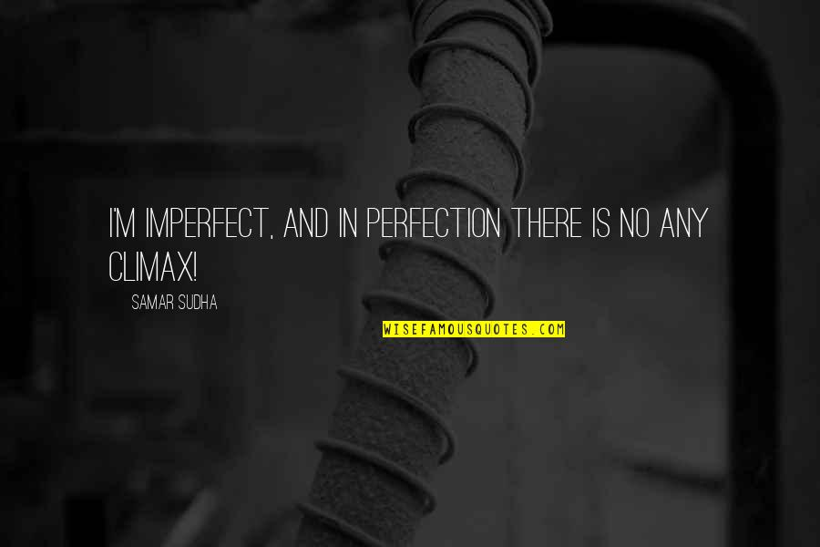 Hal Wilkerson Quotes By Samar Sudha: I'm imperfect, and in perfection there is no