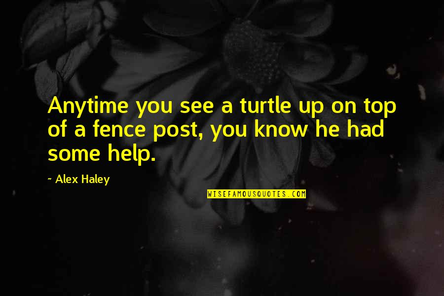 Haley's Quotes By Alex Haley: Anytime you see a turtle up on top