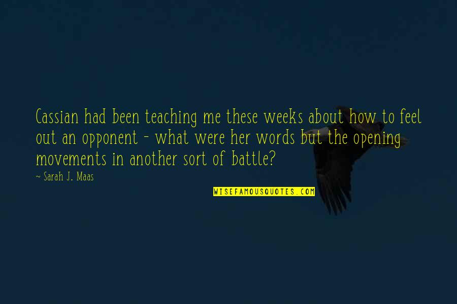 Half Way Through The Day Quotes By Sarah J. Maas: Cassian had been teaching me these weeks about