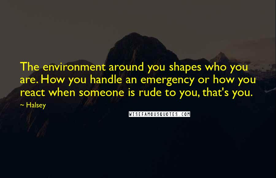 Halsey quotes: The environment around you shapes who you are. How you handle an emergency or how you react when someone is rude to you, that's you.