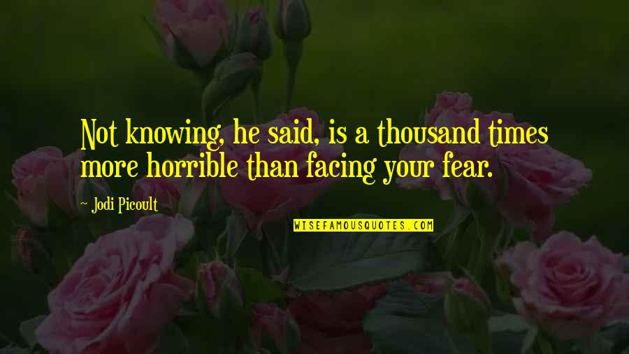 Hamlet And The Ghost Quotes By Jodi Picoult: Not knowing, he said, is a thousand times
