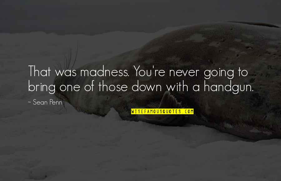 Handgun Quotes By Sean Penn: That was madness. You're never going to bring