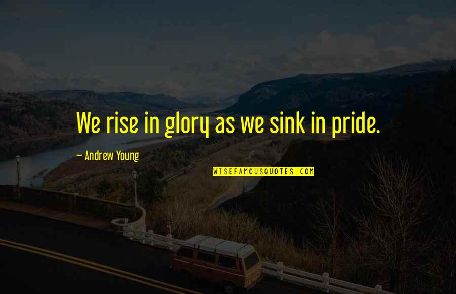 Handsom Quotes By Andrew Young: We rise in glory as we sink in