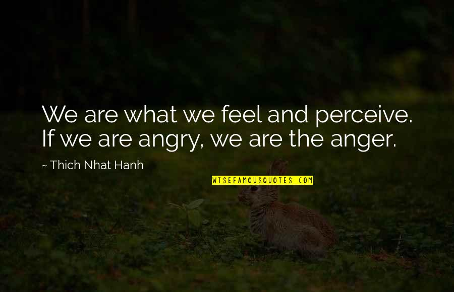 Hanh's Quotes By Thich Nhat Hanh: We are what we feel and perceive. If