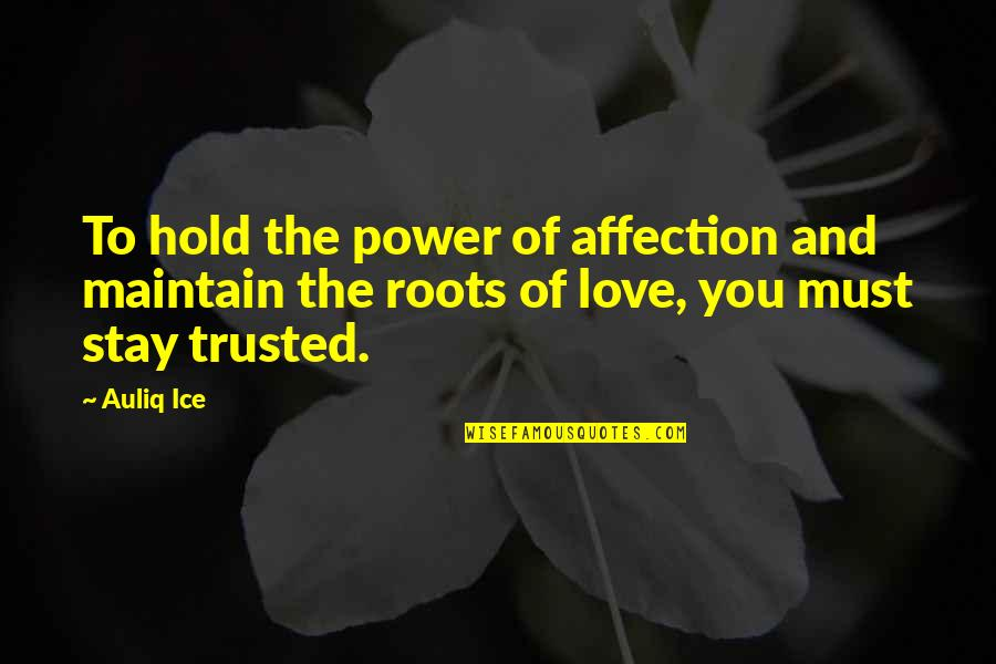 Happiness And Friendship Quotes By Auliq Ice: To hold the power of affection and maintain