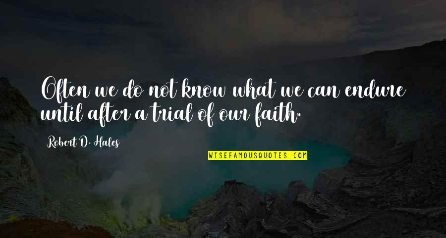 Happiness And Love Bible Quotes By Robert D. Hales: Often we do not know what we can