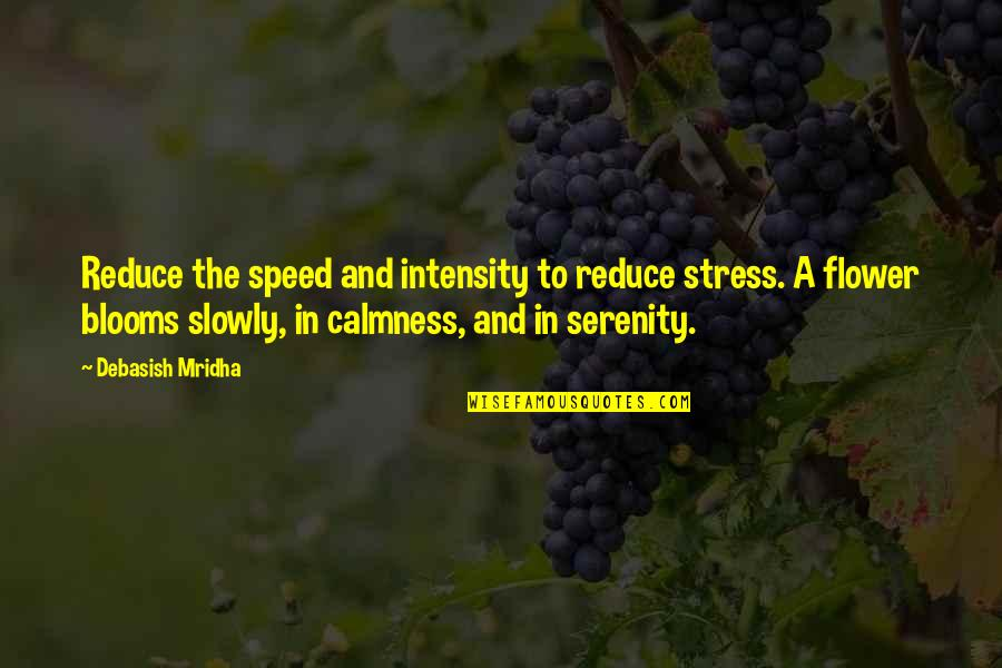 Happiness Blooms Quotes By Debasish Mridha: Reduce the speed and intensity to reduce stress.