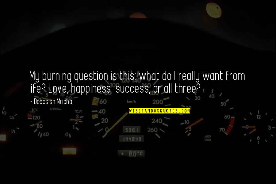 Happiness Is Success Quotes By Debasish Mridha: My burning question is this: what do I