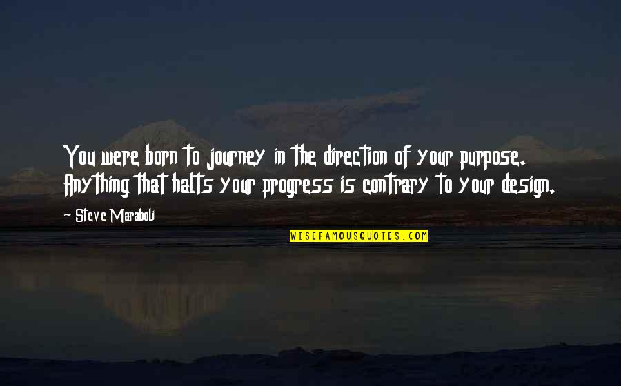 Happiness Is Success Quotes By Steve Maraboli: You were born to journey in the direction