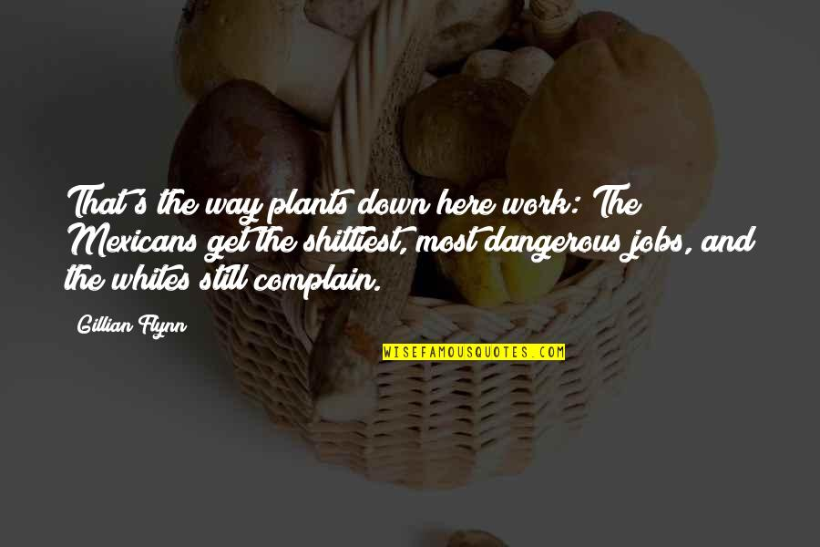 Happiness Shows Quotes By Gillian Flynn: That's the way plants down here work: The