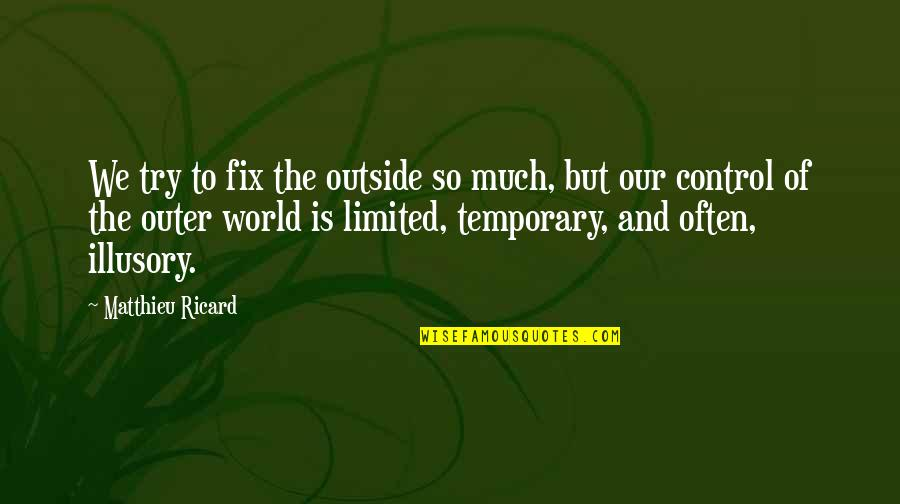 Happiness To Sadness Quotes By Matthieu Ricard: We try to fix the outside so much,