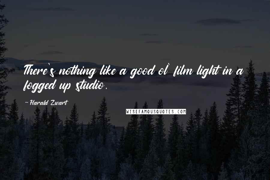 Harald Zwart quotes: There's nothing like a good ol' film light in a fogged up studio.