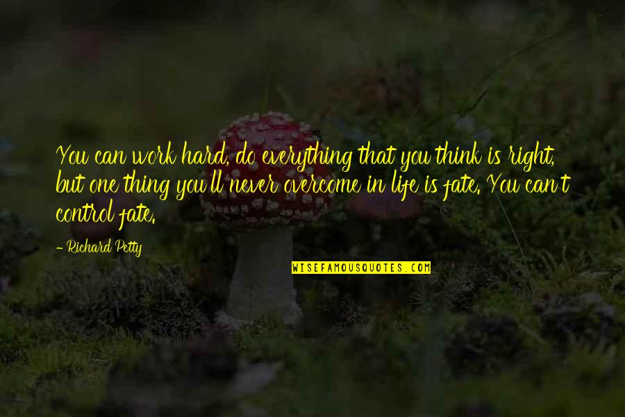 Hard Life Quotes By Richard Petty: You can work hard, do everything that you