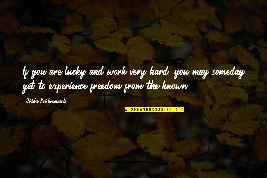 Hard Work And Experience Quotes By Jiddu Krishnamurti: If you are lucky and work very hard,