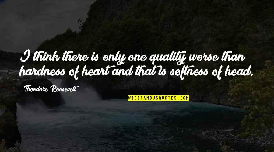 Hardness Quotes By Theodore Roosevelt: I think there is only one quality worse