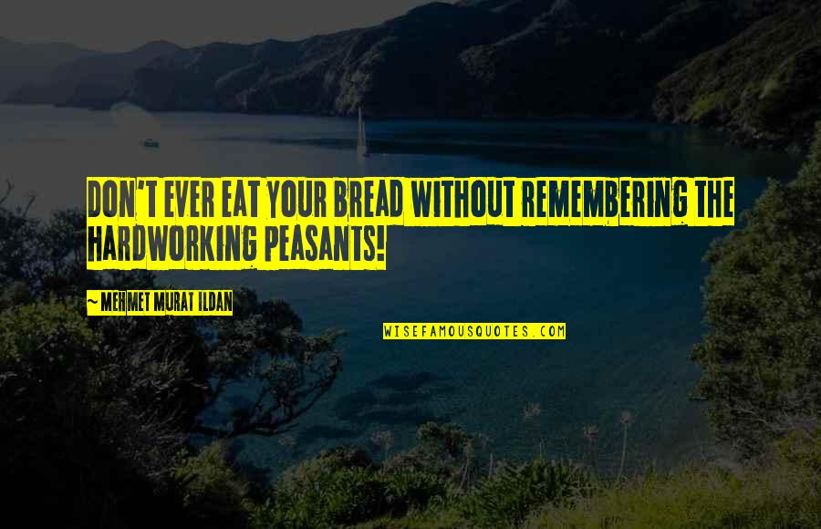 Hardworking Quotes By Mehmet Murat Ildan: Don't ever eat your bread without remembering the