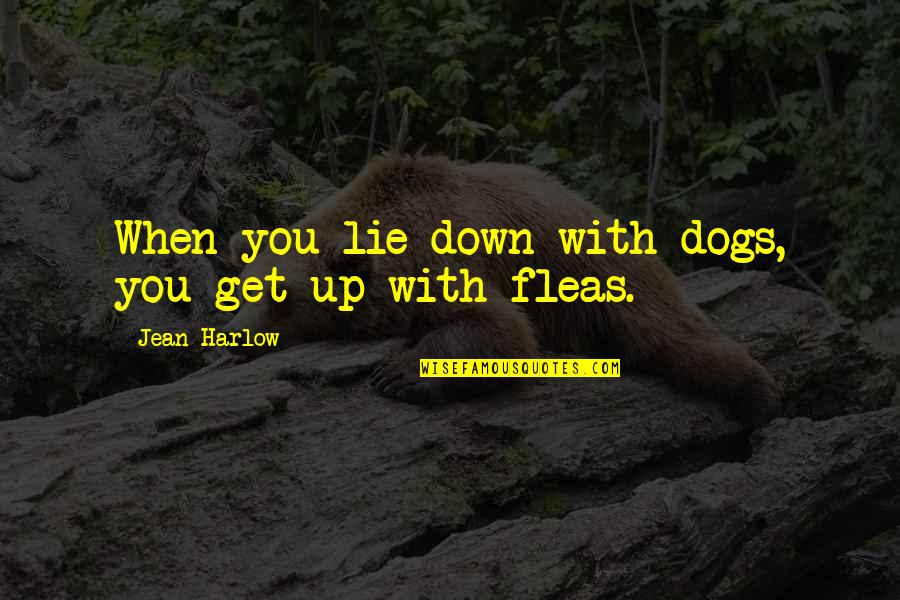 Harlow Quotes By Jean Harlow: When you lie down with dogs, you get