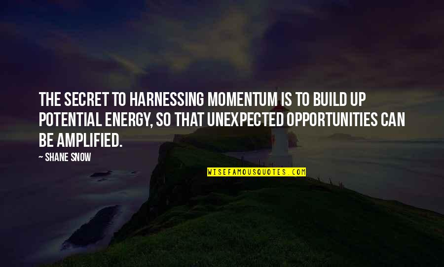 Harnessing Quotes By Shane Snow: the secret to harnessing momentum is to build