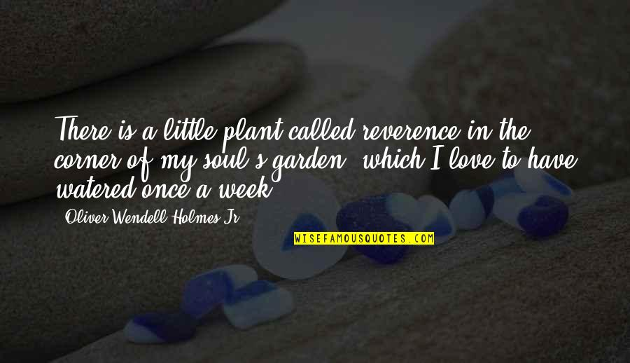 Harriet Vanger Quotes By Oliver Wendell Holmes Jr.: There is a little plant called reverence in