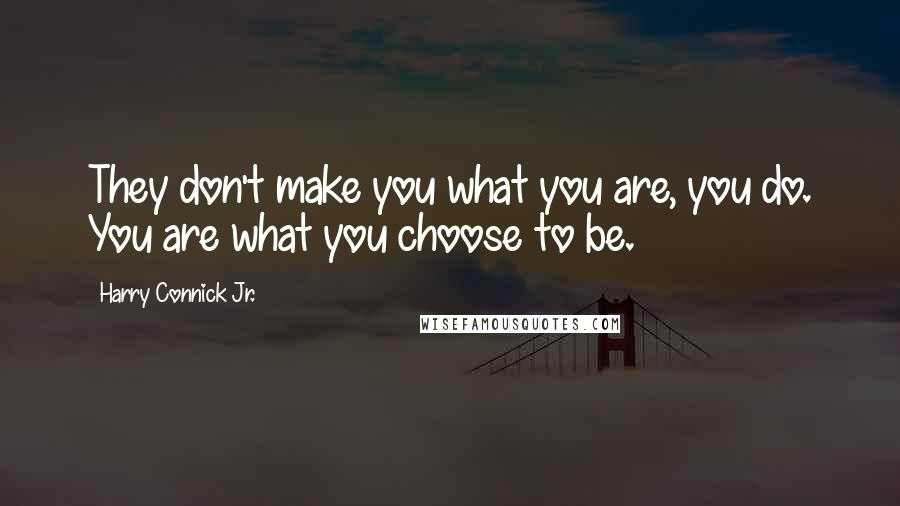 Harry Connick Jr. quotes: They don't make you what you are, you do. You are what you choose to be.