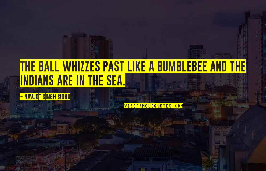 Harry Osborn Quotes By Navjot Singh Sidhu: The ball whizzes past like a bumblebee and