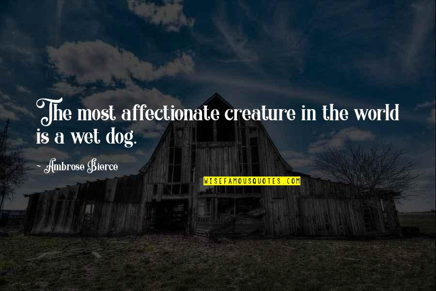 Harry Potter 7 Movie Quotes By Ambrose Bierce: The most affectionate creature in the world is