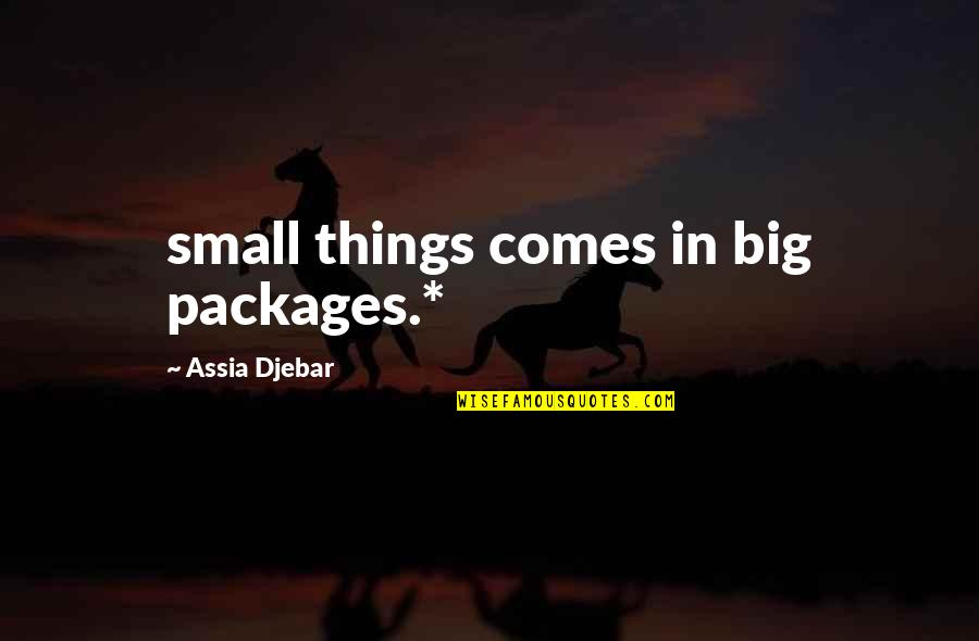 Harry Potter And The Order Of The Phoenix Voldemort Quotes By Assia Djebar: small things comes in big packages.*