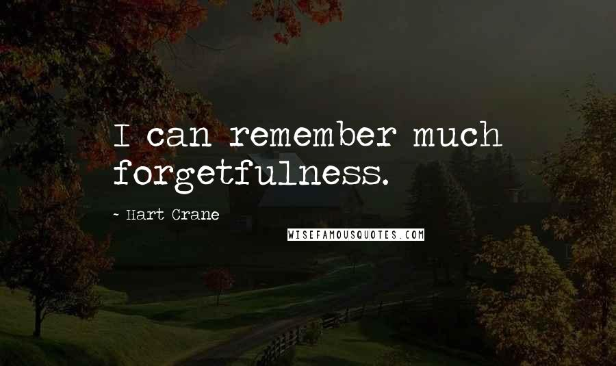 Hart Crane quotes: I can remember much forgetfulness.