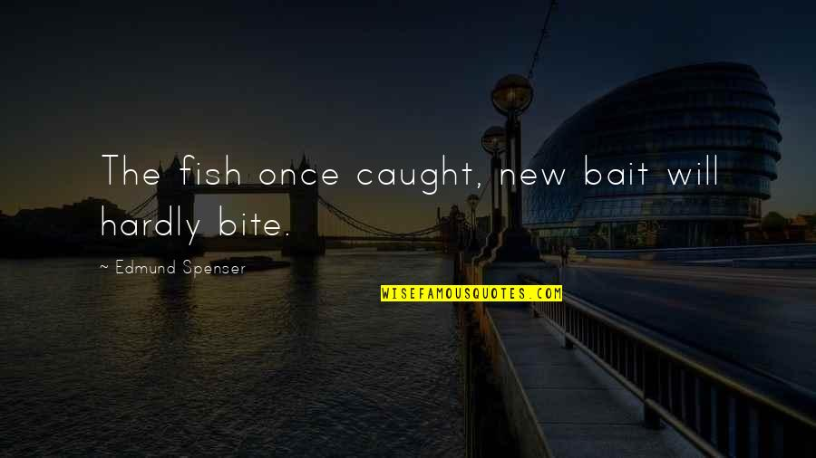Hartford Home Insurance Quotes By Edmund Spenser: The fish once caught, new bait will hardly
