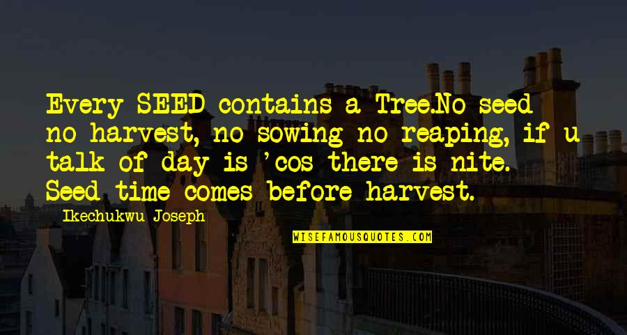 Harvesting Quotes By Ikechukwu Joseph: Every SEED contains a Tree.No seed no harvest,
