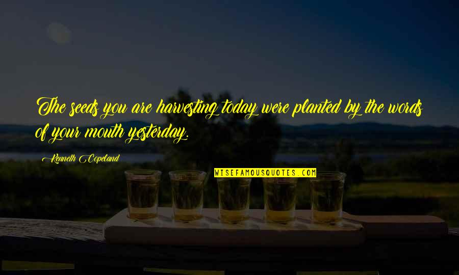 Harvesting Quotes By Kenneth Copeland: The seeds you are harvesting today were planted