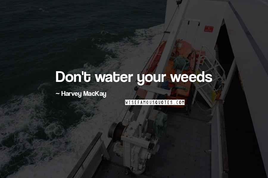 Harvey MacKay quotes: Don't water your weeds