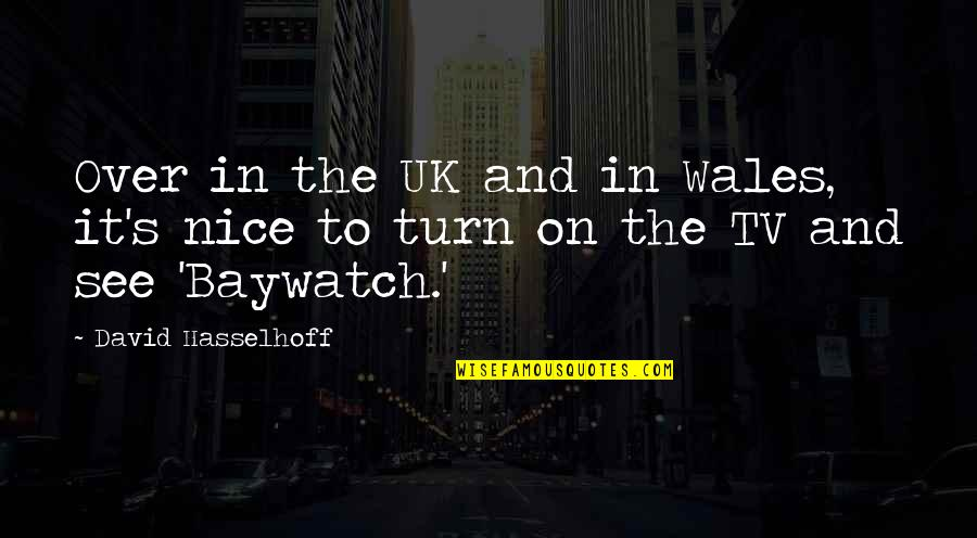 Hasselhoff Quotes By David Hasselhoff: Over in the UK and in Wales, it's