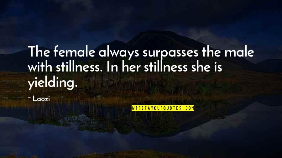 Hate Making Plans Quotes By Laozi: The female always surpasses the male with stillness.