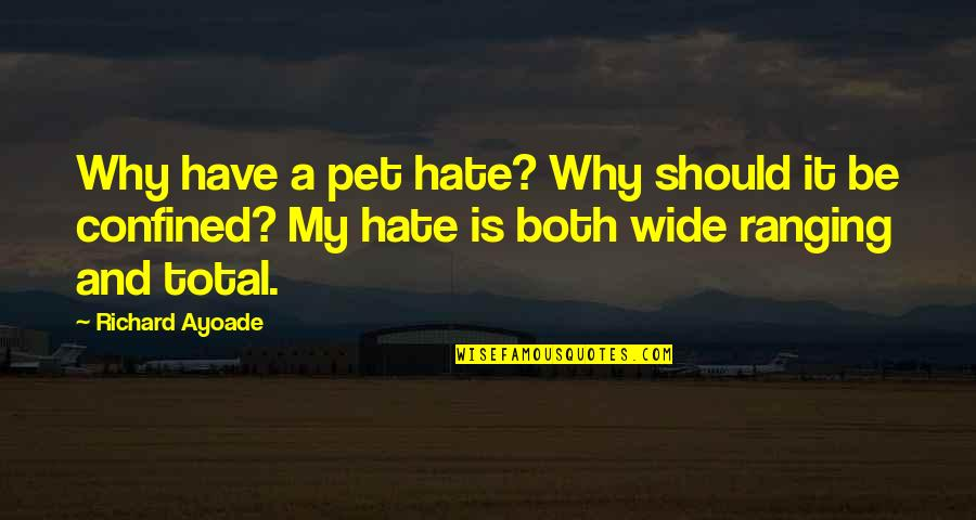 Hate Your Ex Quotes By Richard Ayoade: Why have a pet hate? Why should it