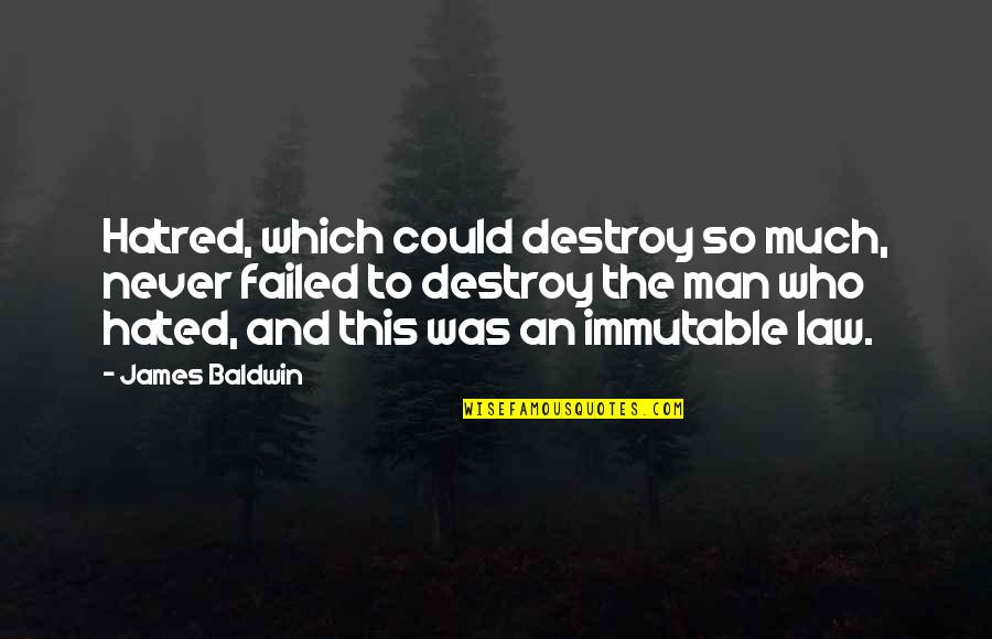 Hated Quotes By James Baldwin: Hatred, which could destroy so much, never failed