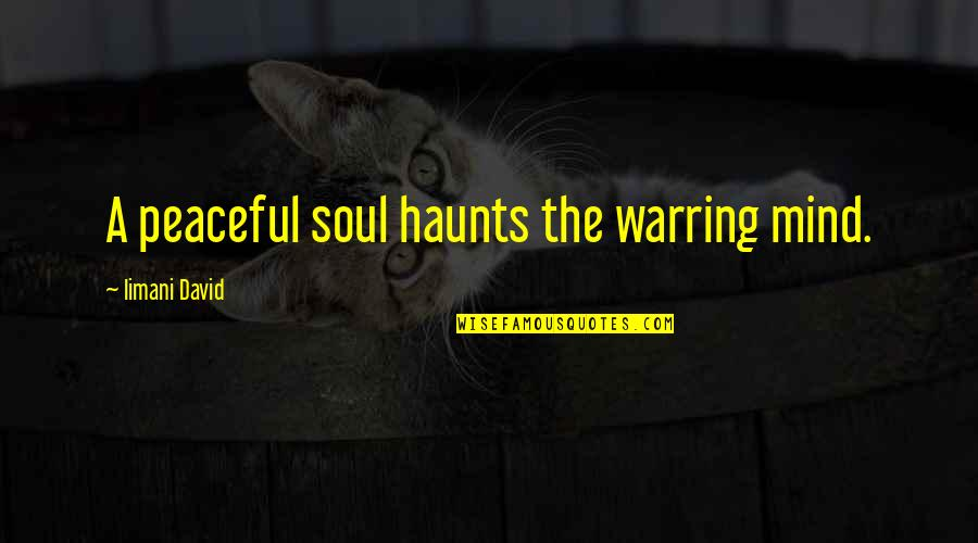 Haunts Quotes By Iimani David: A peaceful soul haunts the warring mind.
