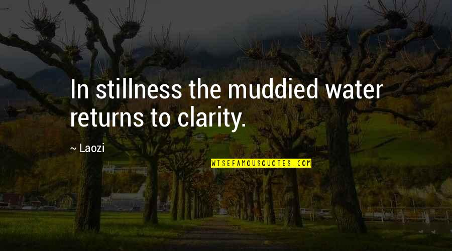 Having A Baby Changing Your Life Quotes By Laozi: In stillness the muddied water returns to clarity.