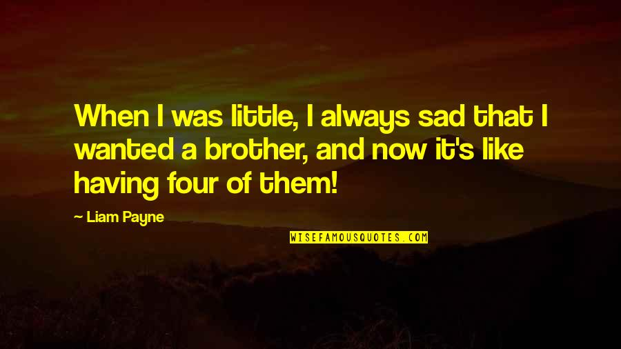 Having A Brother Quotes By Liam Payne: When I was little, I always sad that