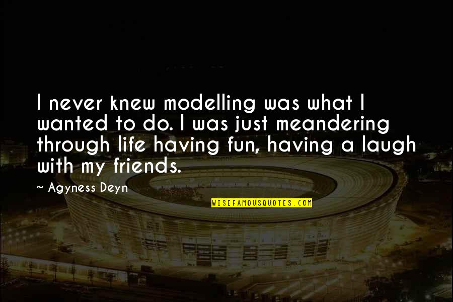 Having Fun In Life Quotes By Agyness Deyn: I never knew modelling was what I wanted