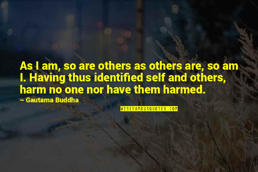 Having No One Quotes By Gautama Buddha: As I am, so are others as others