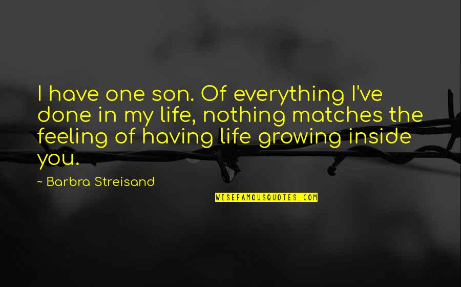 Having The Best Son Quotes By Barbra Streisand: I have one son. Of everything I've done