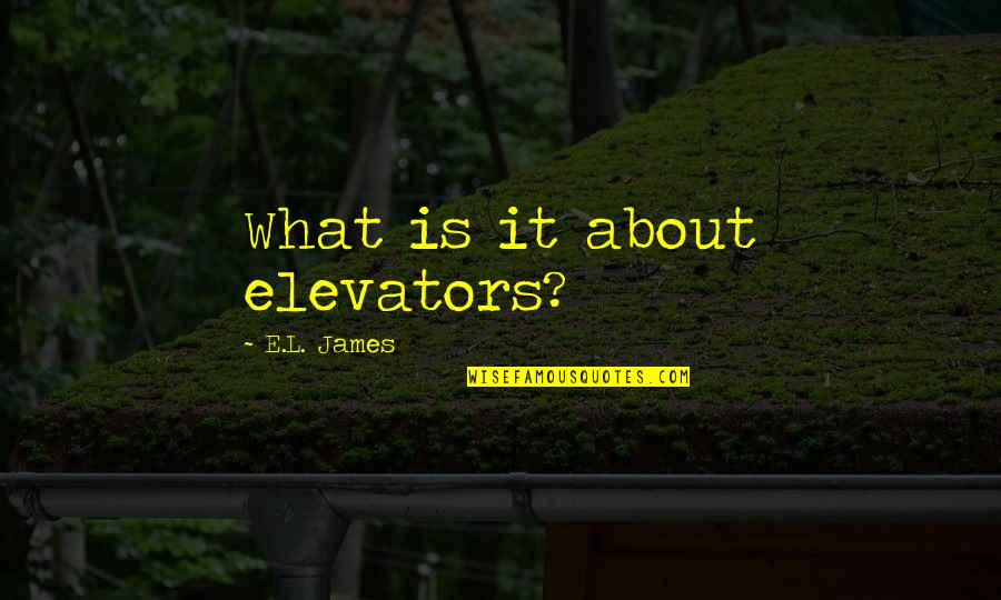 Having To Take Care Of Yourself Quotes By E.L. James: What is it about elevators?