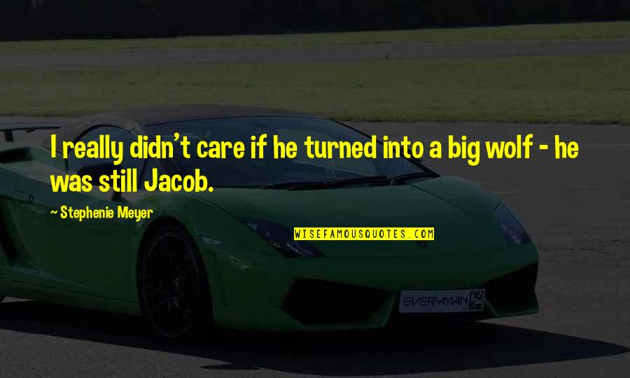 He Didn't Care Quotes By Stephenie Meyer: I really didn't care if he turned into