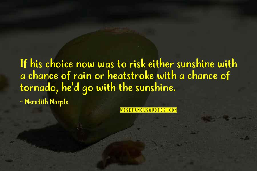 He Is My Sunshine Quotes By Meredith Marple: If his choice now was to risk either