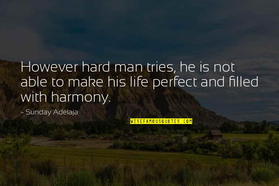 He Is Not Perfect Quotes By Sunday Adelaja: However hard man tries, he is not able