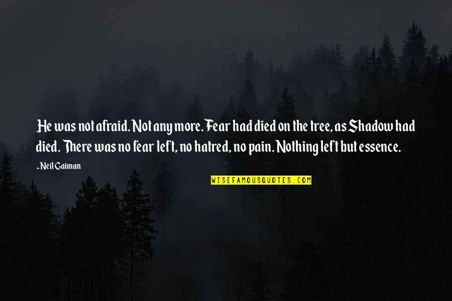 He Left Quotes By Neil Gaiman: He was not afraid. Not any more. Fear