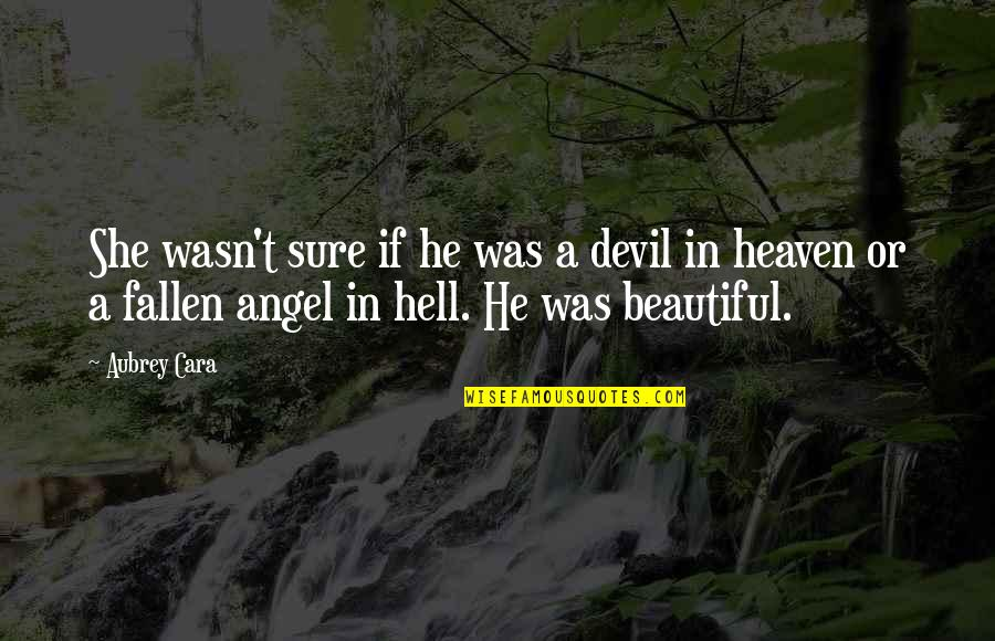 He She Quotes By Aubrey Cara: She wasn't sure if he was a devil