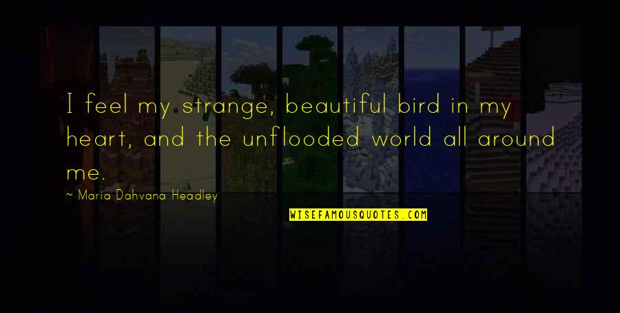 Headley Quotes By Maria Dahvana Headley: I feel my strange, beautiful bird in my